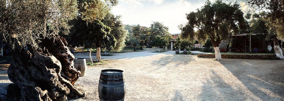 MANOUSAKIS Winery, Kreta