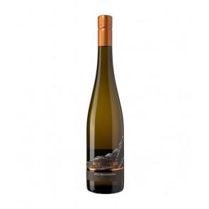 Weinkontor Sinzing 2019 Grauschiefer Riesling QbA trocken D0014-20