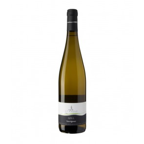 Weinkontor Sinzing 2019 Sauvignon DOC Gfill I1102-20