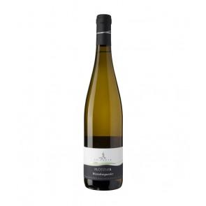Weinkontor Sinzing 2018 Weißburgunder DOC Plötzner I1101-20