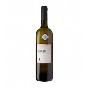 Weinkontor Sinzing 2016 Sauvignon DOC I1054-20