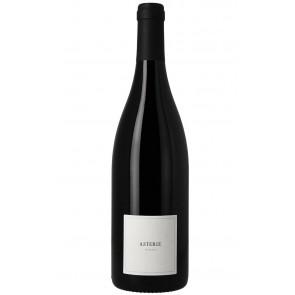 Weinkontor Sinzing 2019 Asterie, Syrah, sans sulfites, vdF, rouge F1116-20