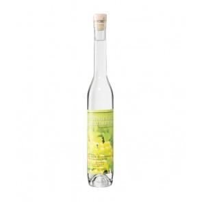 Weinkontor Sinzing Regensburger Tresterbrand D000999-20