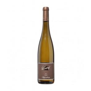 Weinkontor Sinzing 2020 Forster Musenhang Riesling, 1.Lage D00811-20