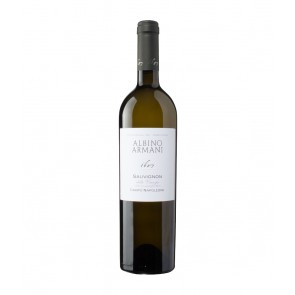 Weinkontor Sinzing 2019 Sauvignon IGT Venezie I1261-20