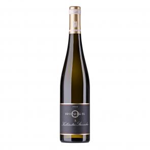 Weinkontor Sinzing 2020 Kallstädter Steinacker Riesling, VDP.Erste Lage D004912-20