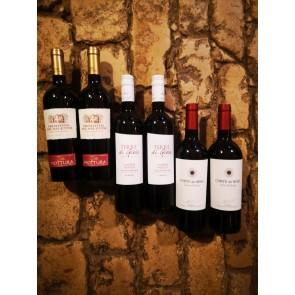 Weinkontor Sinzing Rotweinpaket Italien XYZ14-20